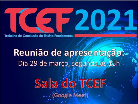 Lançado para os alunos dos 9º anos o TCEF (Trabalho de Conclusão do Ensino Fundamental 2021)