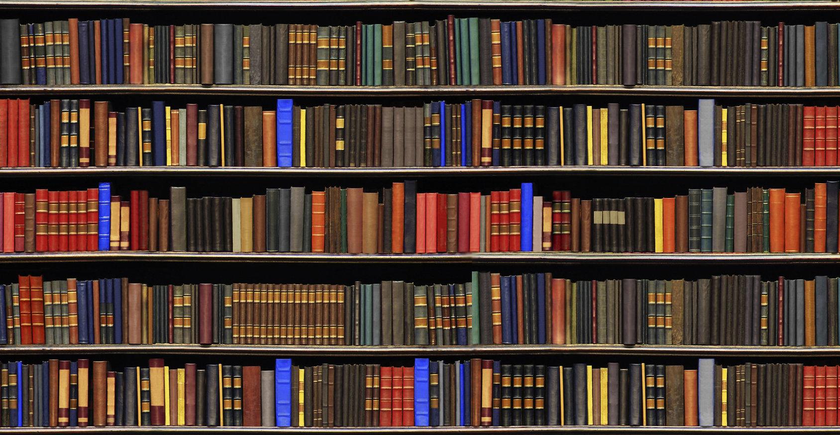 book shelf 3.jpg