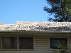 0015- 1 Bad Roof E.C_