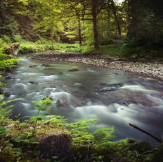 Polenz river