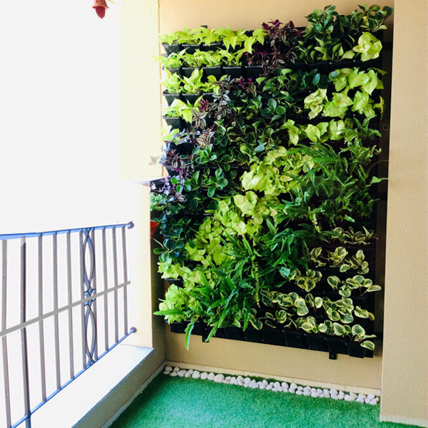 Green wall For Balcony