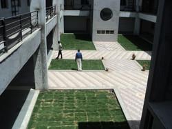 saaj garden photo (8).JPG