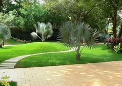 saaj garden photo (20).jpg