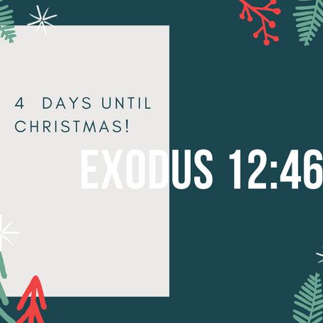 4 Days - Exodus 12:46