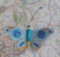 Clothes Moth.jpg