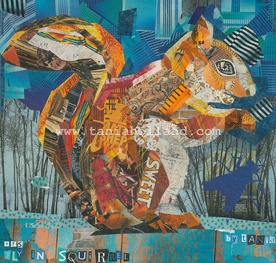 175. Fly in Squirrel Redcliffe Print.jpg
