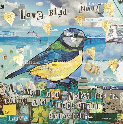 Love Bird Watermarked.jpg