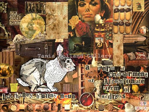 122. Honey Bunny Redcliffe.jpg