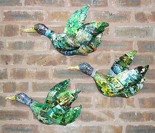 Fly in Ducks.jpg
