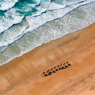 Aerial view of stunning beach