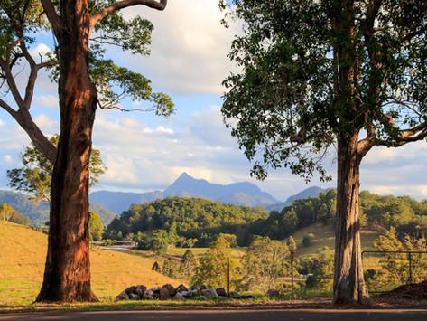 """Gourmet dining, mountain peaks, tranquility... an award-winning Bed & Breakfast awaits""."