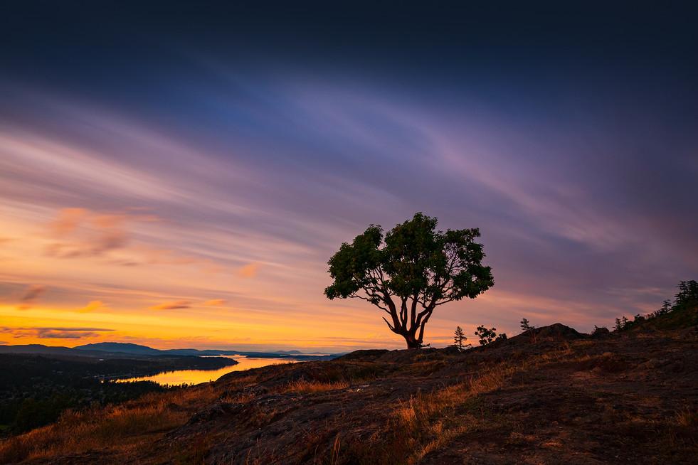 Mount Douglas Sunset