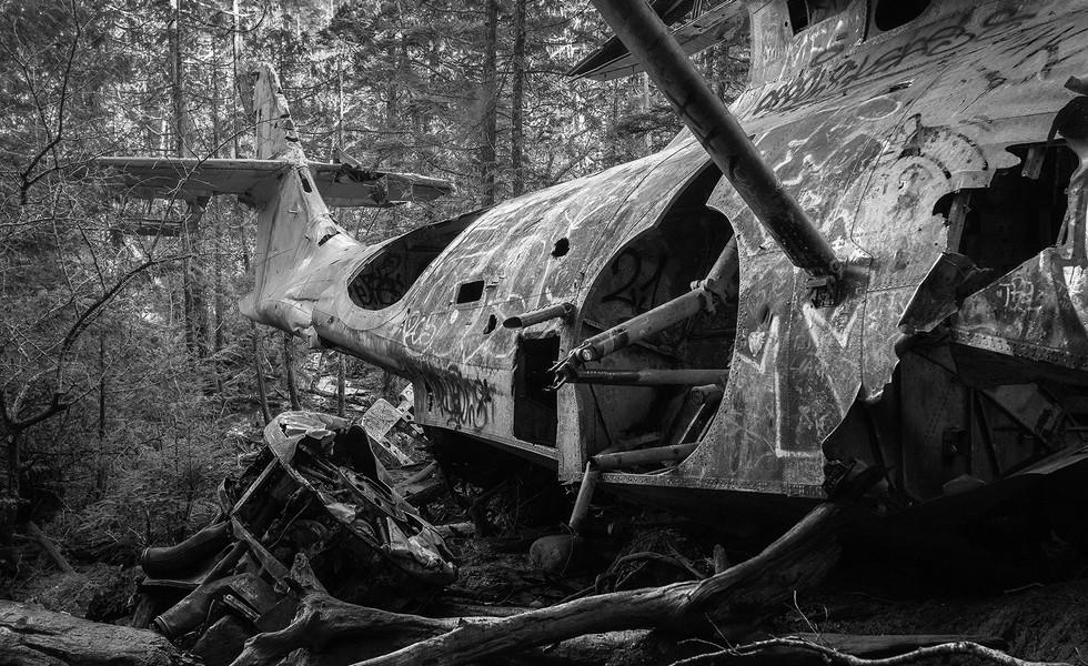 Tofino Plane Crash Site