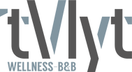 Vlyt_Logo_DEF.png