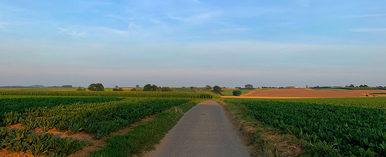 Vlijtingen panorama