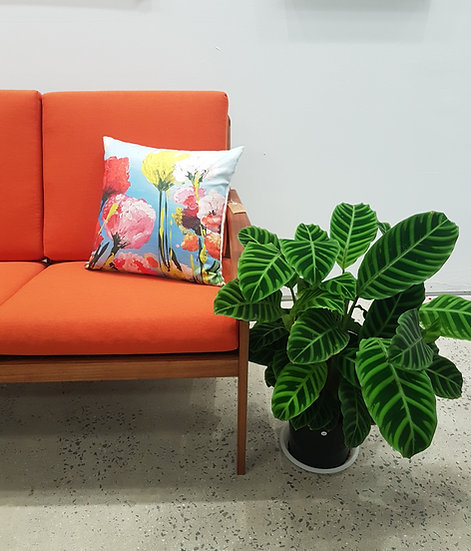 Summer Glow Cushion