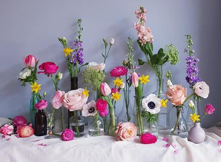 Fun Spring flower facts