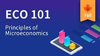 ECO 101