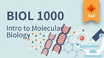 BIOL 1000