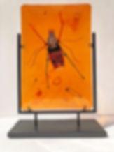 Lisaius.Arachnid.jpg