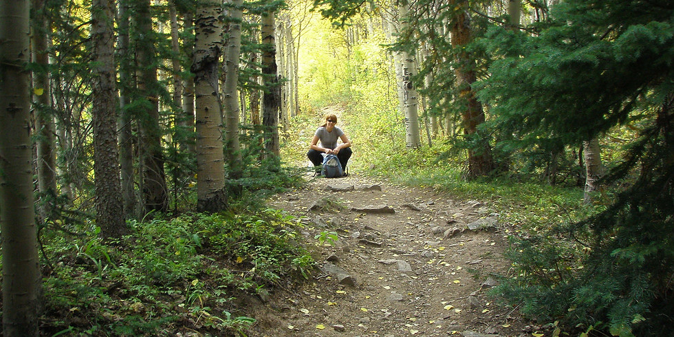 Forest Bathing with Heather Farrell