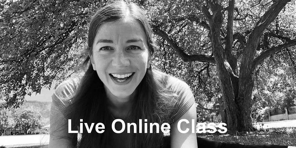 Yang and Yin All Levels Yoga with Nora Hansa