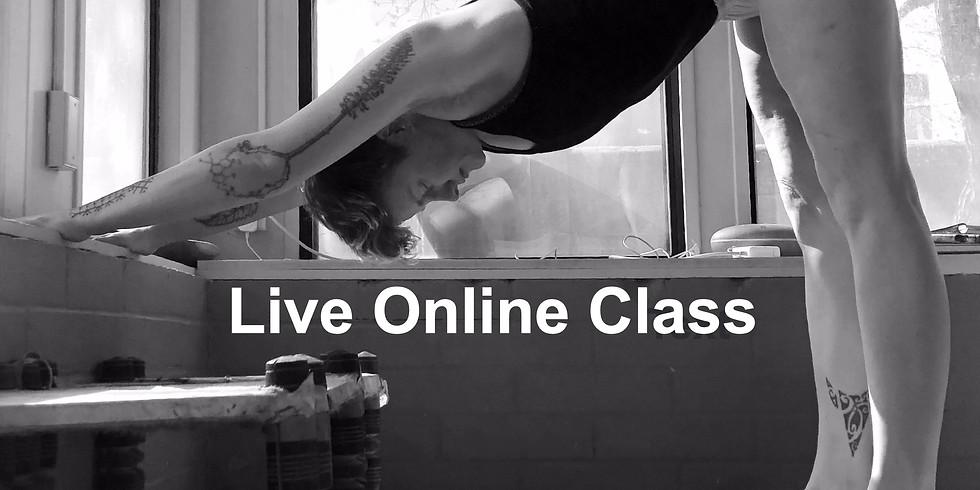 Yoga: Level 2 with Avery Kalapa