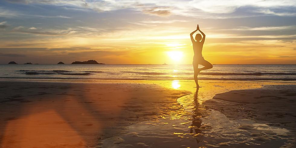 Radiant Health: Super Charge Your Immunity with Deva Khalsa & Japa K. Khalsa