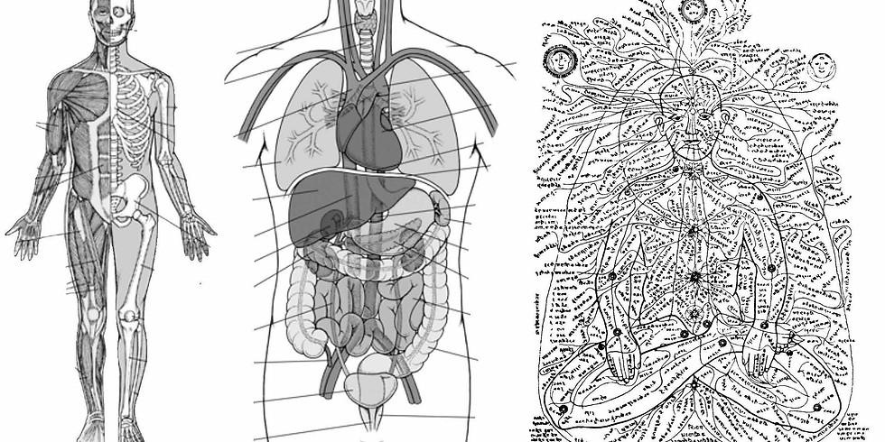 Asana: Outer Body, Inner Body, Subtle Body Class Series with Kim Schwartz