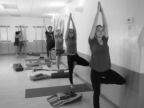 Yoga: Level 1-2