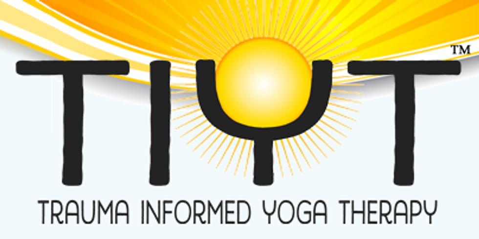 Sundara Trauma Informed Yoga Therapy Training, Water Element