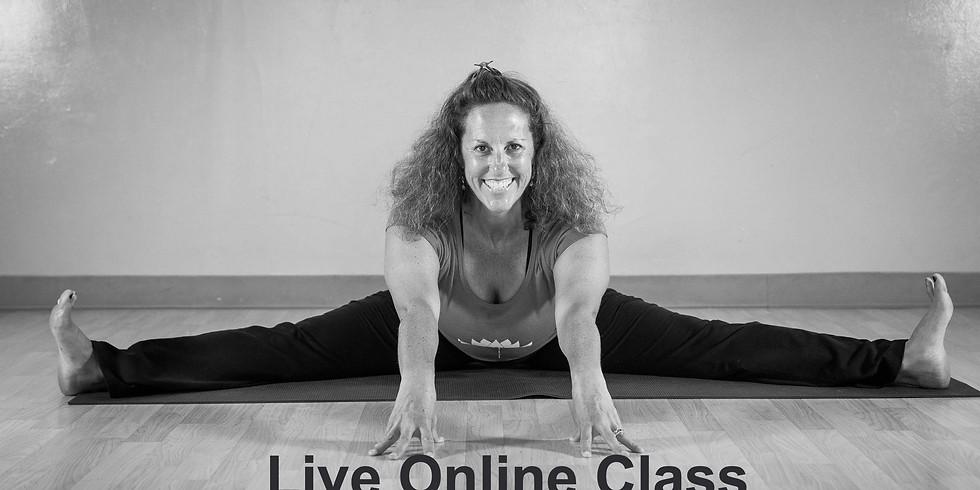 Yoga for Lunch with Niki Feldman