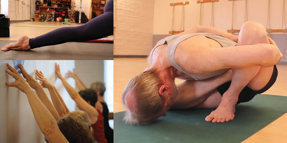 Yoga for the Whole Body with Kim Schwartz (Recording)