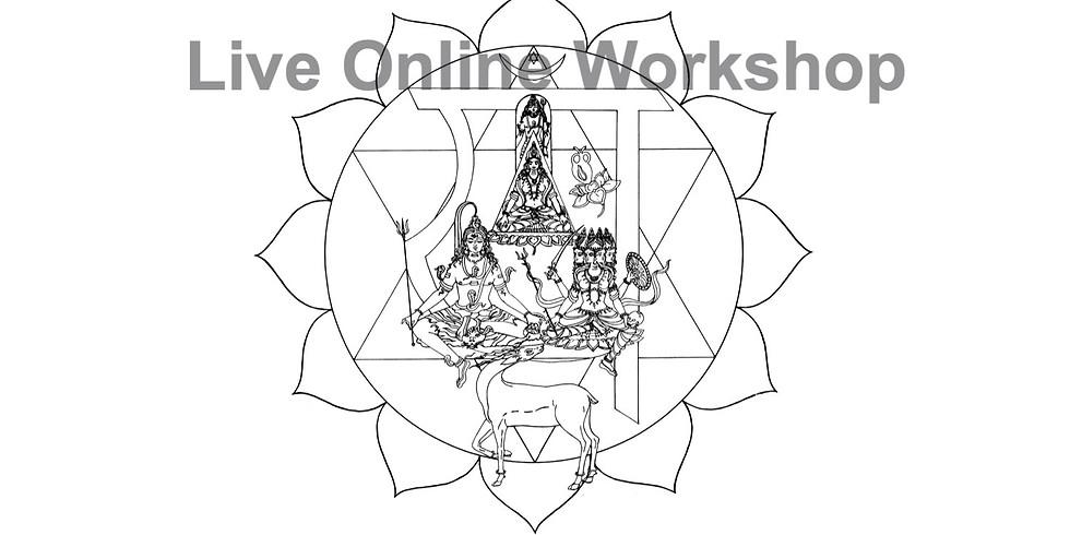 Asana, Chakras, Nadis, and Bandhas two weekend workshop with Kim Schwartz