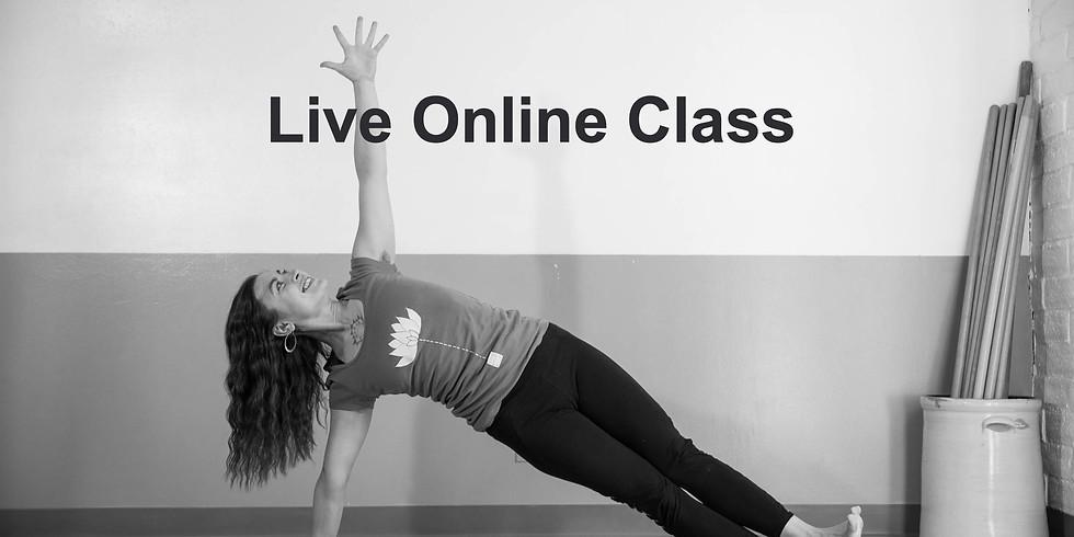 Yoga: Mixed Level with Zhenya Novareign