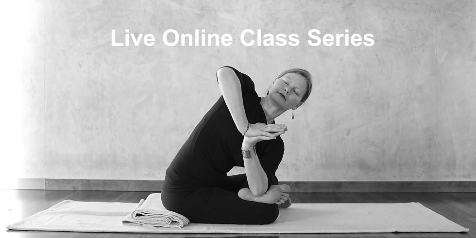Yin Yoga Class Series with Melissa Spamer