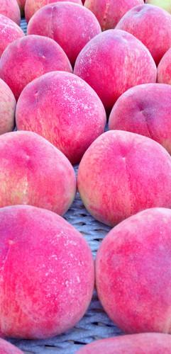 収穫後の桃
