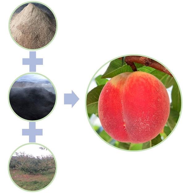 有機栽培図式2.jpg