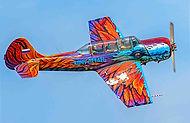 научиться летать на самолете в краснодарском крае
