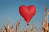 шар сердце полет для двоих