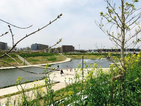 暖かくなったし、TSUTAYA T-site柏の葉キャンパスで探究しましたよ( ´ ▽ ` )