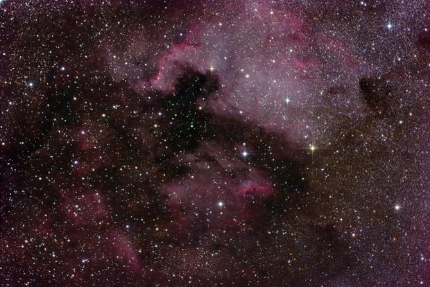 North American Nebula.jpg