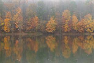 Clopper Lake Reflections 3.jpg