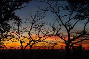 Skyline Sunsets.jpg