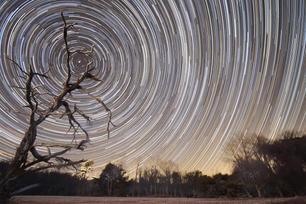 Big Meadows Star Trails Reduced.jpg