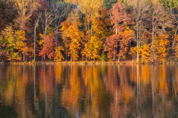 Clopper Lake Reflections 8.jpg