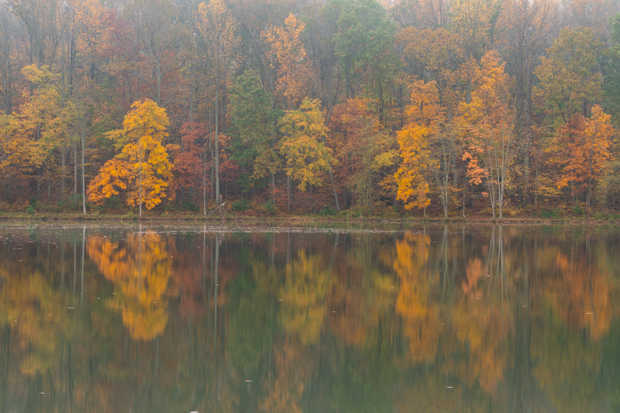 Clopper Lake Reflections 4.jpg