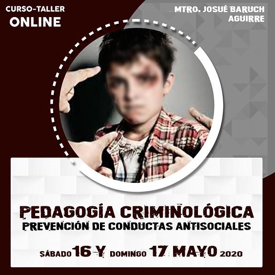 Pedagogía criminológica. Prevención de conductas antisociales