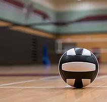 Volleyball.webp