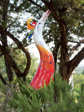 GLORY BIRDS